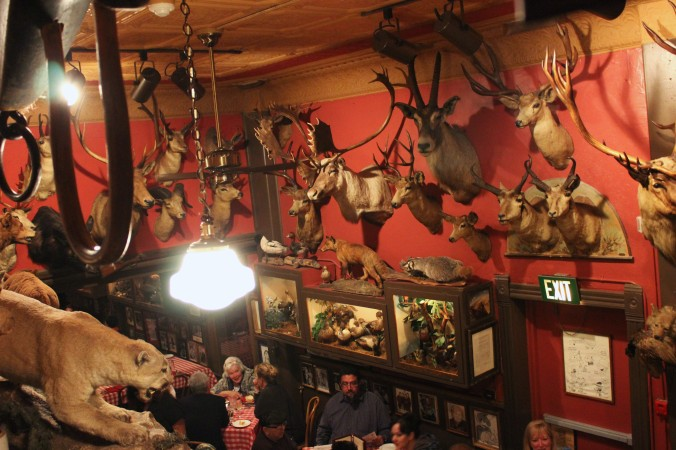 The Buckhorn Saloon