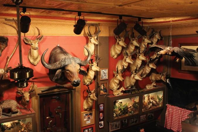The Buckhorn Tavern