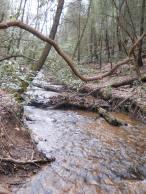 Appalachian Trail 018