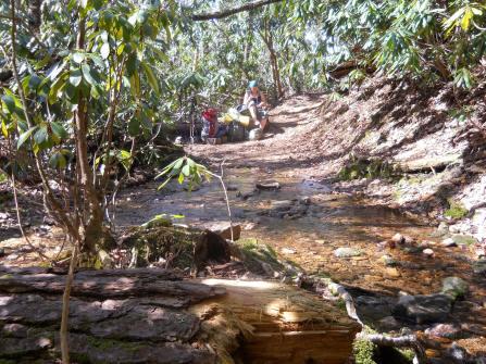 Appalachian Trail 083