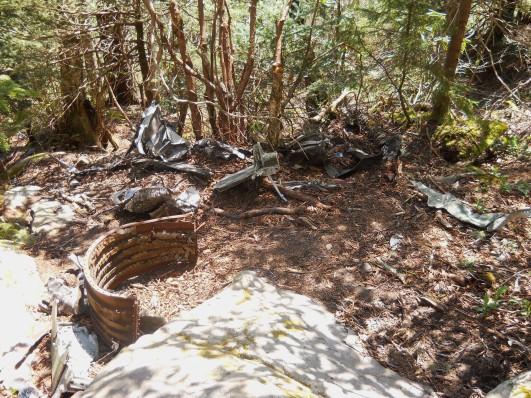 Appalachian Trail 222