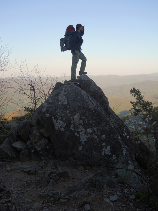 Appalachian Trail 229