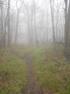 Appalachian Trail 301