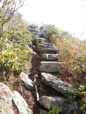 Appalachian Trail 309