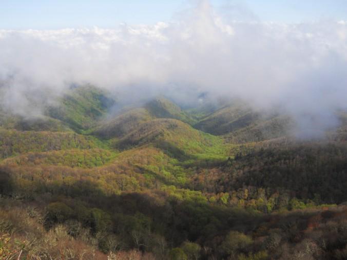 Appalachian Trail 310