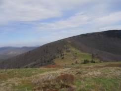 Appalachian Trail 359