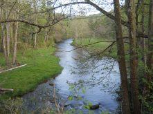 Appalachian Trail 376