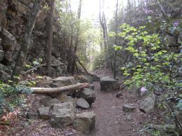 Appalachian Trail 385