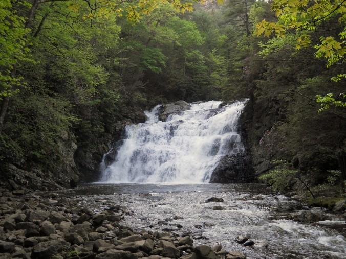 Appalachian Trail 393