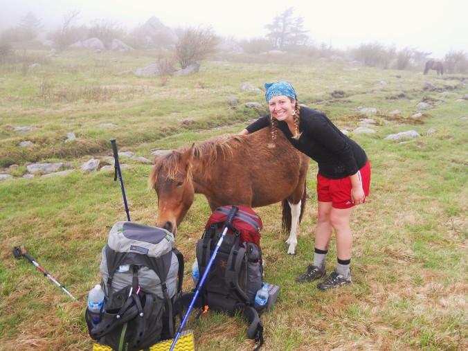 Appalachian Trail 434
