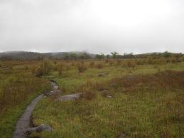 Appalachian Trail 453