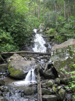 Appalachian Trail 455