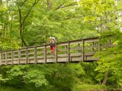 Appalachian Trail 506