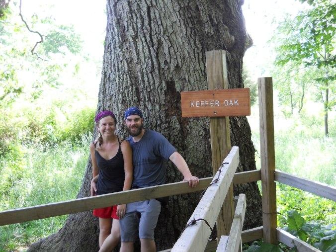 Appalachian Trail 526