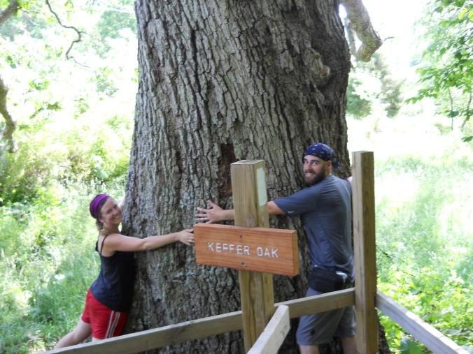 Appalachian Trail 527