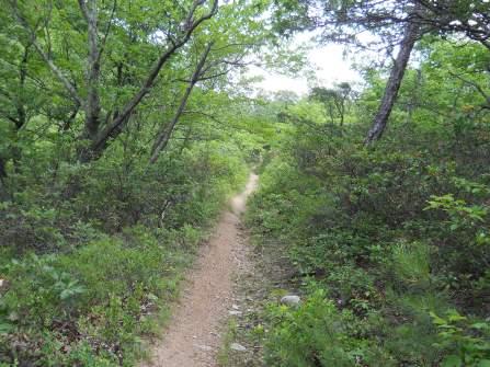 Appalachian Trail 580