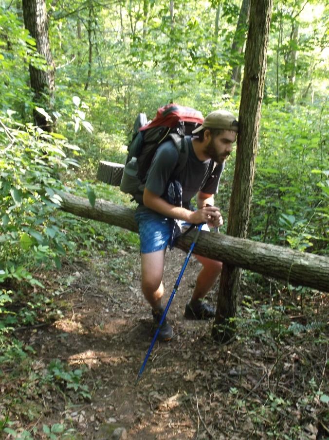Appalachian Trail, Part II 096.JPG