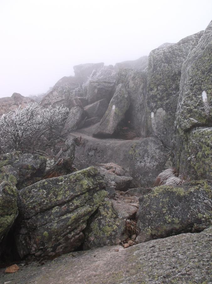 Appalachian Trail, Part II 637.JPG